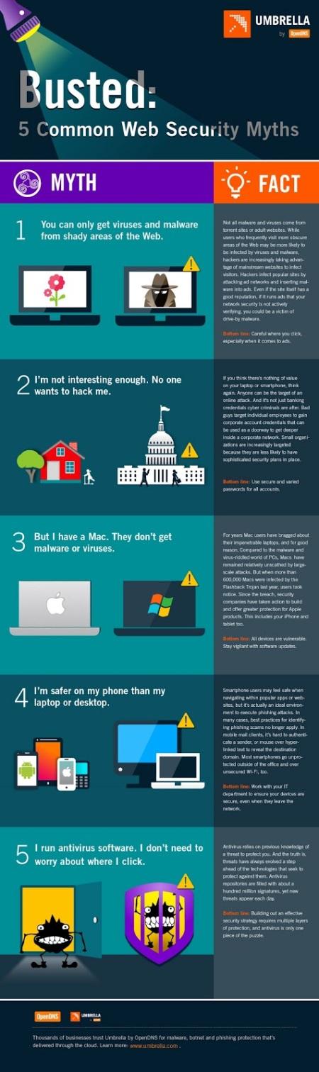 Infografía: 5 mitos de la seguridad derribados